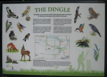 Information board featuring the title of The Dingle and illustrations of birds and other animals, a map, a cricketer, and a plant species | Rebecca Davies BSc.