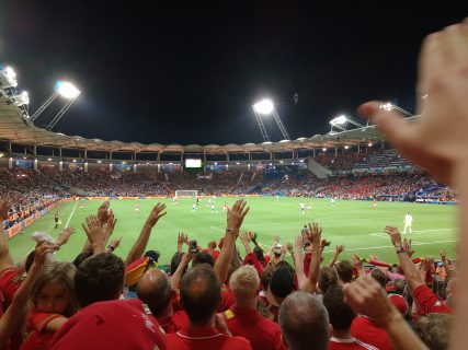 Wales fans at the Euro 2016 match versus Russia in Toulouse